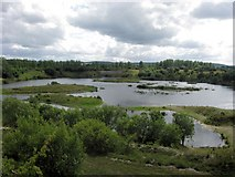 SP9314 : The New Islands at the South End of College Lake by Chris Reynolds