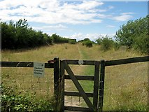 SP9314 : Entrance to the Quarry Top Track, College Lake by Chris Reynolds
