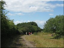 SP9314 : The Old Quarry ring road north of the Crow's Nest, College Lake by Chris Reynolds