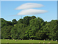 NY7708 : Lenticular clouds over the Eden Valley by Stephen Craven