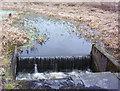 NS7065 : Monkland canal near Cuilhill by Robert Murray