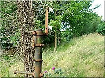 J2764 : Old telegraph pole, Lisburn by Albert Bridge
