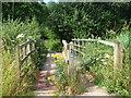 TR1759 : Footbridge on Cyclepath, Fordwich by David Anstiss