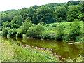 SO5210 : River Wye, looking downstream by Jonathan Billinger