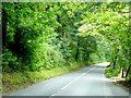 SO5308 : A466 Wye Valley Road by Jonathan Billinger