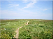 TG0345 : Bridleway to nowhere by Richard Law