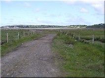 C4248 : Track, Strath by Kenneth  Allen
