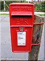 TM3863 : Saxon Road Postbox by Geographer