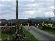 SH6041 : Ynysfor Crossing by James Wells