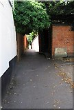 TL7522 : Hilly Gant and Braintree Cage, New Street, Braintree by Trevor Wright