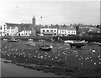 SC2484 : View of Peel looking over the harbour by Dr Neil Clifton