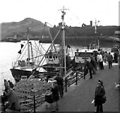 SC2484 : A busy quayside at Peel, Isle of Man by Dr Neil Clifton