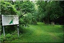 TL5741 : Shadwell Wood by Glyn Baker