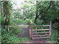 SM9401 : Gate On The Pembrokeshire Coast Path by Peter Whatley