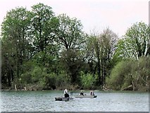 SP9113 : Fishing from boats near the woodland edge, Tringford Reservoir by Chris Reynolds
