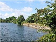 SP9113 : The Dam, Tringford Reservoir by Chris Reynolds