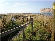 TA2372 : The Headland Way to Thornwick Bay by Dr Patty McAlpin