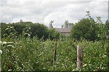 TQ9345 : Sheerland Farm Oast, Swan Lane, Sheerland Farm, Pluckley, Kent by Oast House Archive
