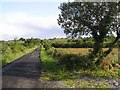G9057 : Fassagh Road by Kenneth  Allen