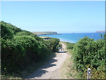 SW9276 : Looking up the River Camel estuary towards Gun Point (left) by Nick Mutton