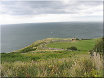 SH7783 : Enclosed grazing land on the eastern side of the Great Orme by Eric Jones
