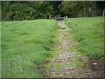 SU1062 : Footpath, Alton Barnes by Maigheach-gheal