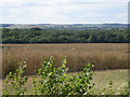 TL2080 : Monks wood viewed from Walton hill by Michael Trolove