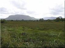 G7656 : Mullanyduff Townland by Kenneth  Allen