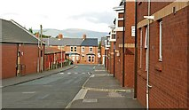 J3774 : Wilgar Street, Belfast by Albert Bridge