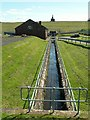 NY5455 : Castle Carrock Beck, at the Waterworks by Rose and Trev Clough