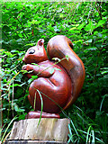 SZ5881 : Carved Red Squirrel by John Webber