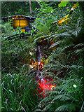 SZ5881 : Coloured Illuminations by John Webber