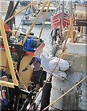 SC2484 : Unloading Queenies at Peel by Andy Stephenson