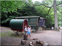 TQ5338 : Gypsy Caravans in the Enchanted Forest, Groombridge Place by Oast House Archive