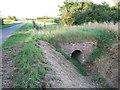 TF4207 : Brick bridge, New Drove, Wisbech St Mary by Richard Humphrey