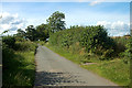 SJ4331 : Country lane to Colemere by Row17