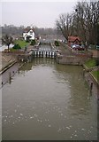 SU5980 : The River Thames, Goring On Thames by Kurt C