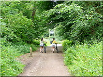 SO5513 : Forest footpath users, 2 by Jonathan Billinger