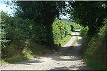 SJ3434 : Access track at Old Marton by Row17