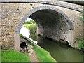 SP8314 : Aylesbury Arm: Bridge No 16 by Chris Reynolds