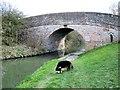 SP8713 : Aylesbury Arm: Bridge No 8 by Chris Reynolds