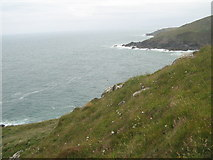 SW4941 : Looking east to Hor Point by David Medcalf