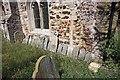 TL6199 : St Mary, Fordham, Norfolk - Gravestones by John Salmon