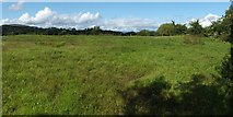 NS3976 : Site of Mains of Cardross Farm by Lairich Rig