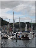SX8752 : Moorings by the Dartmouth Higher Ferry by Rod Allday