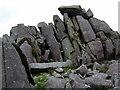 SN1432 : Carn Menyn bluestones by ceridwen