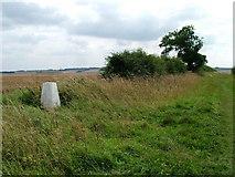 SE9238 : Trig Pillar on Newbald Wold by David Brown