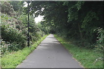 SD4964 : Cycleway near Halton by Peter Bond