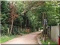 TQ2274 : Putney Park Lane by Derek Harper