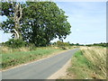 TL9687 : Country Road by Keith Evans